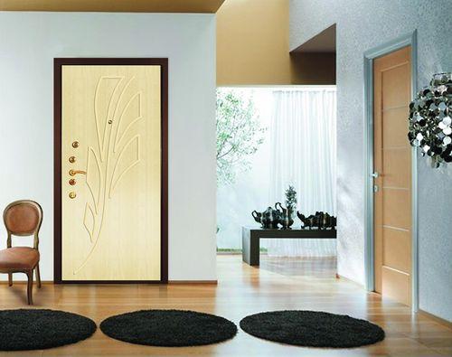 Дверь Эльбор в интерьере