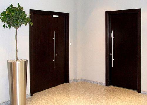 Тамбурные двери на лестничную площадку_5