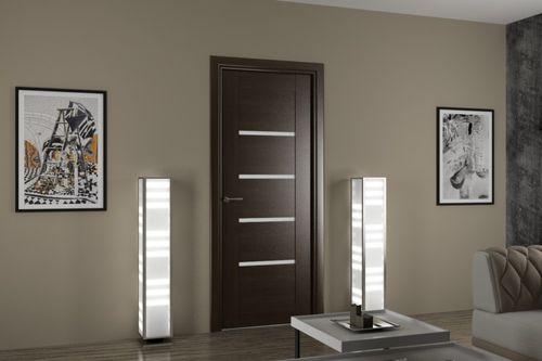 Какие двери лучше выбрать — экошпон или ПВХ