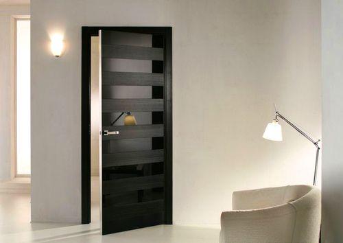 Темная дверь со вставками